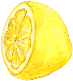 illustration of a lemon